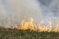 Prescribed burning in the summer months is OK