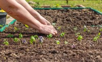 It is time to start making spring garden preparations
