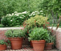 It is time to start acclimating your plants to the indoors