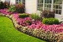 Keep energy conservation in mind when planning landscape
