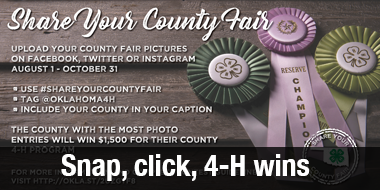4-H wins.png
